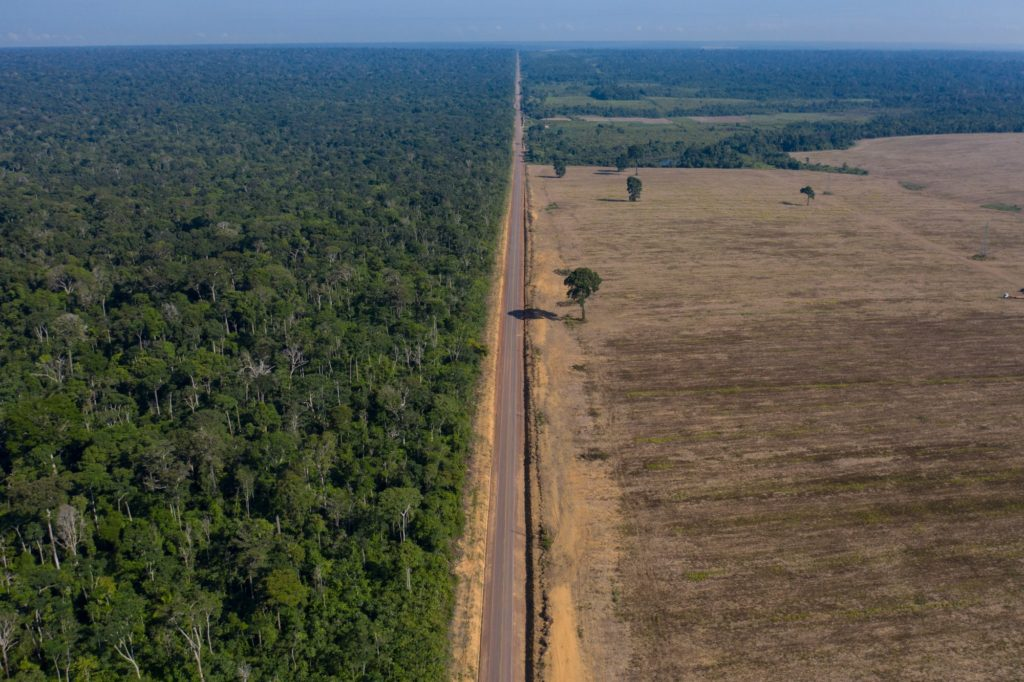 UK to push plan to 'halt and reverse global deforestation by 2030' at Cop26